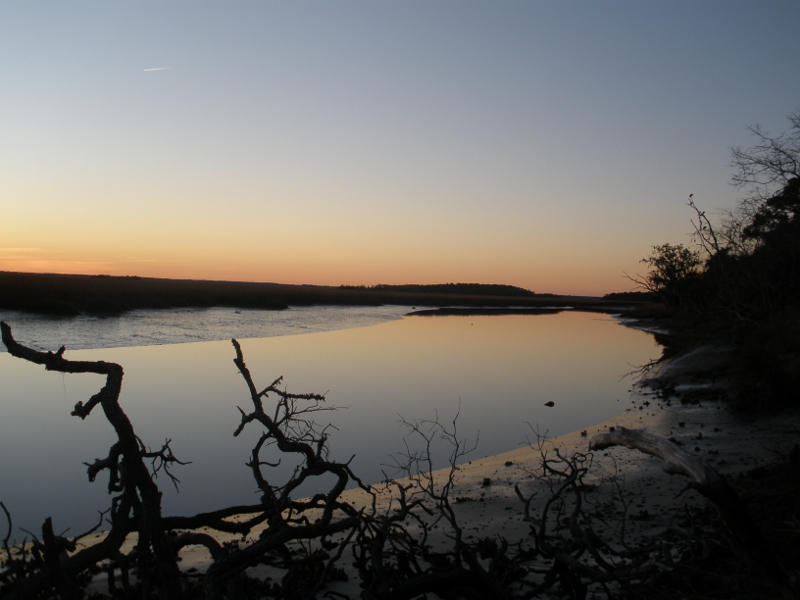 Review of FAIC Preventive Conservation Workshop: Ossabaw Island, GA (January 7-20, 2012)
